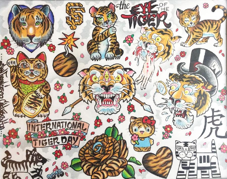 tiger-flash-one-year